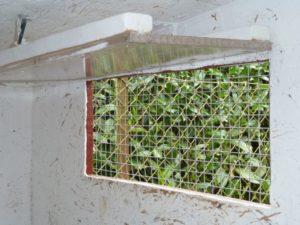 Fenster im Zwerghuhnstall zur Belüftung, gegen Schimmel, gute Stallluft für Zwerghühner wichtig