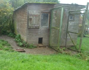 Gartenhaus als Zwerghuhnstall, Gartenhütte umbauen für Zwerghühner, Hühnerstall