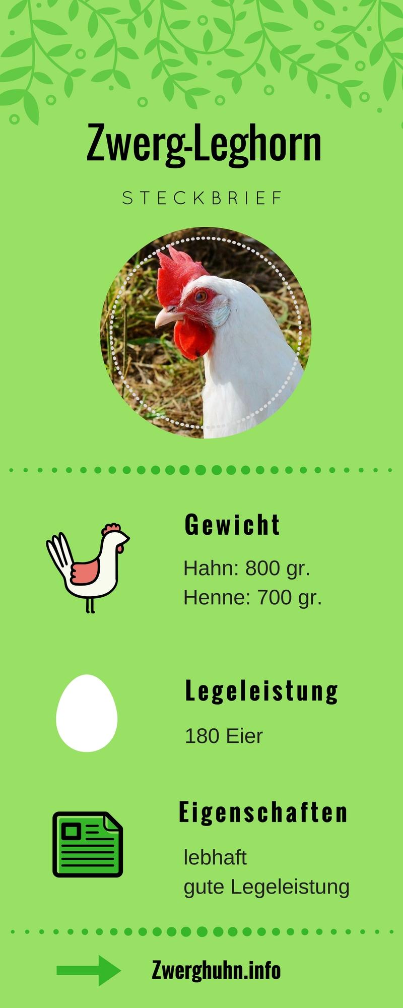 Zwergleghorn Steckbrief, Legeleistung, Eigenschaften und Rassemerkmale, Zwerghühner