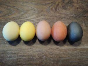 Ostereier natürlich gefärbt mit Gemüse