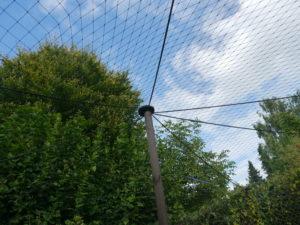Vogelschutznetz zur Abwehr von Greifvögeln