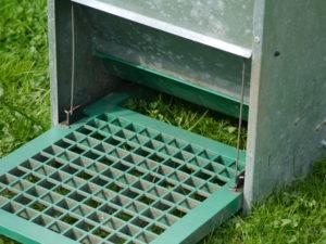 Trittplatte für Futterautomat Feedomatic für Hühner und Geflügel, Geflügelfutterautomat