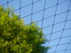 Vogelschutznetz für Hühner zum Schutz vor Raubvögeln