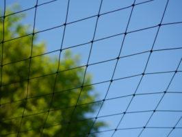 Vogelschutznetz / Volierennetz