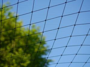 Vogelschutznetz