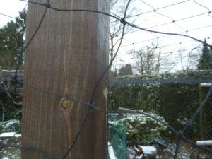 Vogelschutznetz zum Schutz vor Raubvögeln