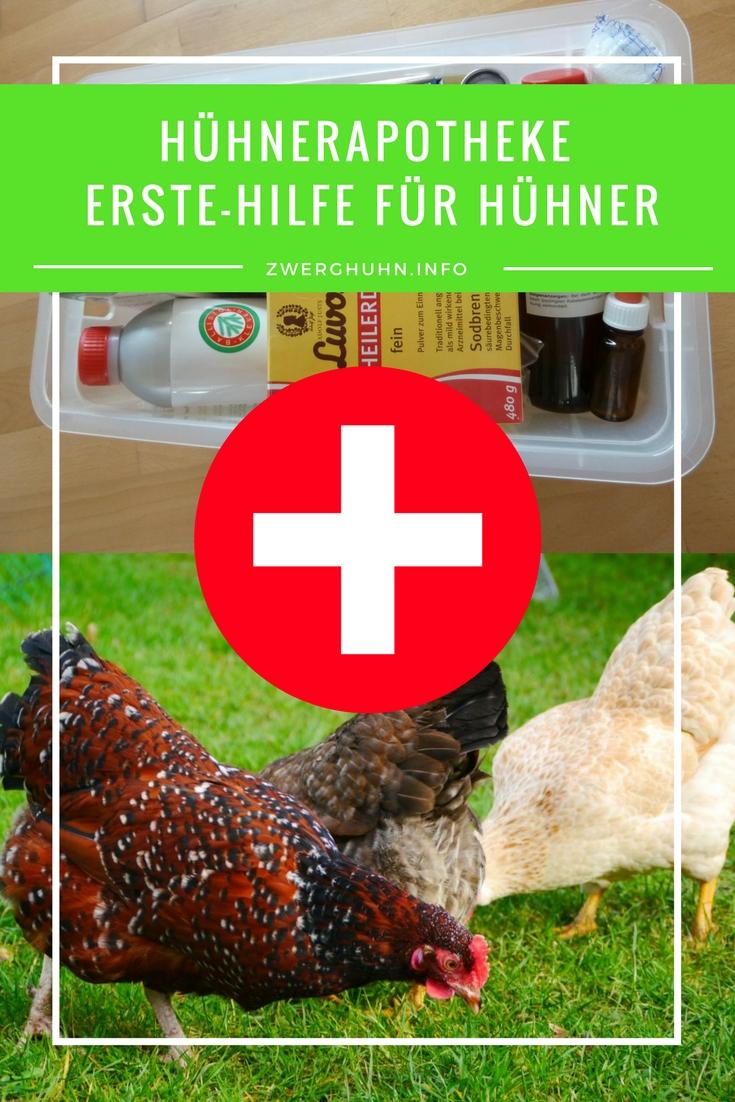 Hühnerapotheke, Erte Hilfe Kasten für Hühner, Medikamente für Zwerghühner