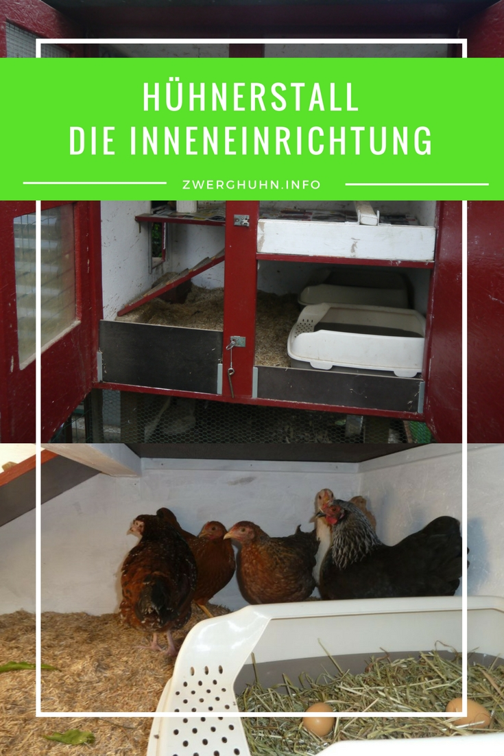 Hühnerhaus , Hühnerstall Inneneinrichtung , Legenest, Kotbret, Sitzstange