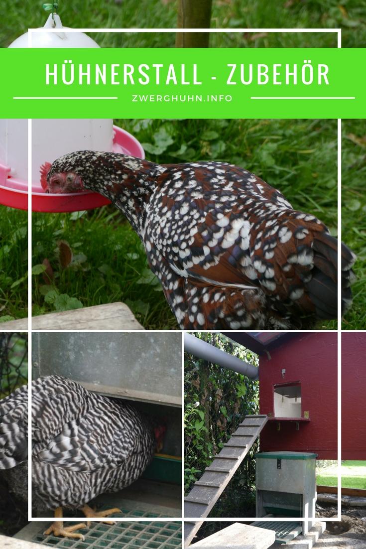 Zubehör für Zwerghühner - Tränken - Futtergefäße - Hühnerklappe