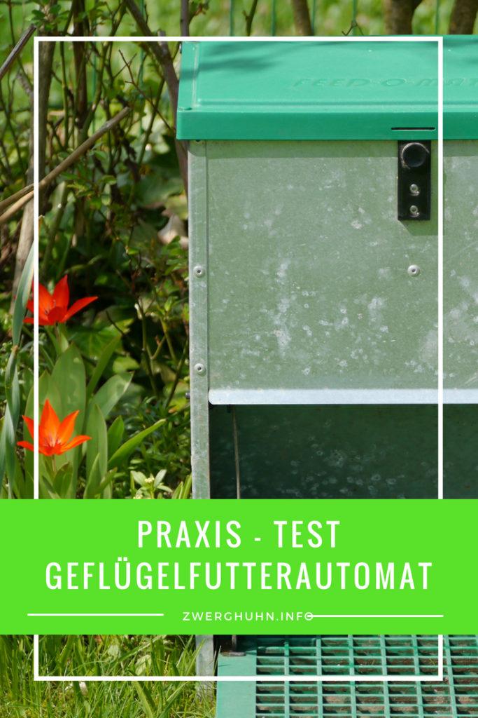 Geflügelfutterautomat Feedomatic für Hühner im Praxis - Test