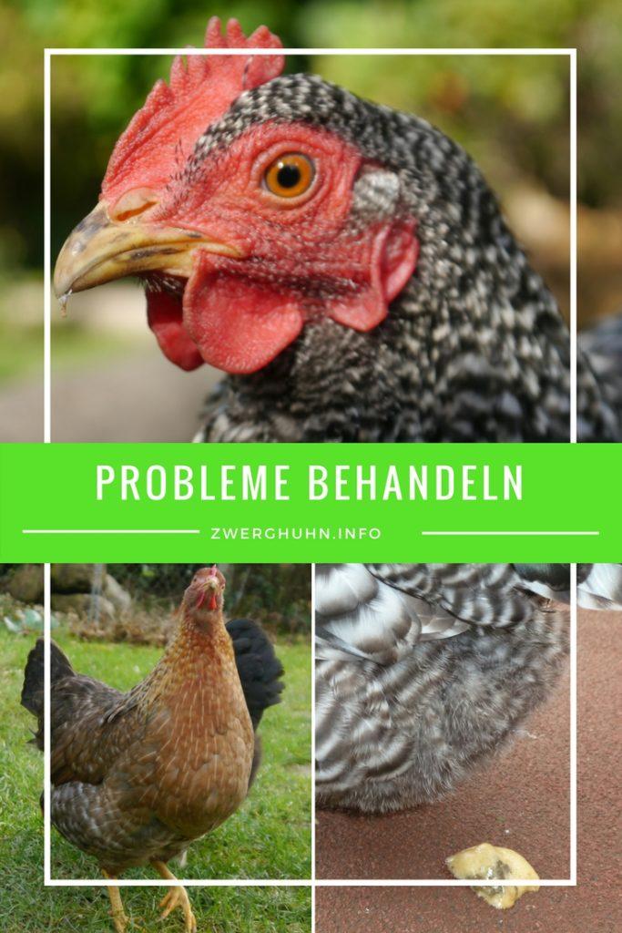 Probleme bei Hühnern behandeln und erkennen, Durchfall, Kropfverstopfung