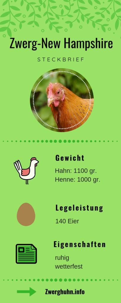Zwergnewhampshire, Legeleistung, Steckbrief, Eigenschaften und Rassemerkmale, beliebte Zwerghühner